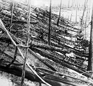 Figure 2.  The meteor that exploded over Tunguska, Russia  in 1908 flattened a large area of forest.   Photo from www.sciencephoto.com