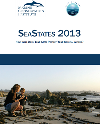 seastates 2013